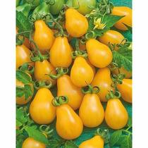 Jiomate Pera Amarillo 25 Semillas