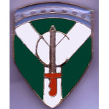 Distintivo Comando Ejercito Argentino