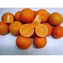 30 Mudas De Fruta Limão Cravo No Tubete - Arvore Frutifera