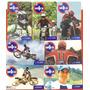 Set De Tarjetas Unica Motocross 7 Pz.