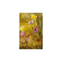 Pintura Arte Anemones And Daffodils 0 Art, 24 X36