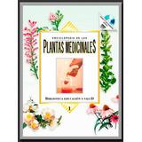 Enciclopedia De Plantas Medicinales | Libro Digital
