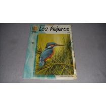 Revista Pintemos Los Pajaros Coleccion Leonardo