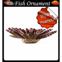 Enfeite Soma Resina Invertebrado Ouriço Rajado Fish Ornament