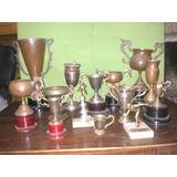 Lote De Trofeos