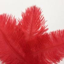 10 Pcs Penas Avestruz 10-15 Cm Lote 10 Unidades Vermelha