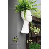 Macetas con forma de cabeza hogar muebles y jard n en for Macetas originales para plantas