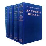 Tratado De Anatomía Humana Testut 4 Tomos E Book