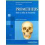 Libro: Prometheus Texto Y Atlas De Anatomía, Tomo 3:...- Pdf