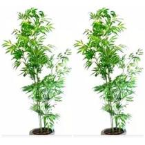 2 Bambu Reto 190cm Plantas Artificiais Decoração - 2x 587556