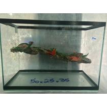Aquario Terrario Para Tartaruga 50x25x35
