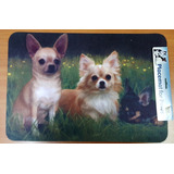 Alfombra Puertas Americana Perro Chihuahua, 48 X 32 Cms
