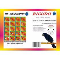 Revista De Pássaros Bicudo