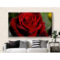 Quadro Decorativo 105x75 Rosa Vermelha Barato