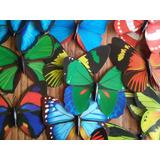 Adorno Decorativo Para Jardin Mariposas (cantidad 100)
