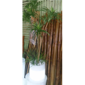 Yuca Artificiale Decorativa