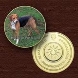10804 - Cão Da Raça (american Foxhound)