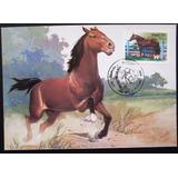 A9396 Máximo Postal Cavalos De Raça Brasileiros Nº 107/9