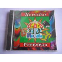 Grupo Mojado Norteñas Perronas Cd 1996 Nuevo Y Sellado!