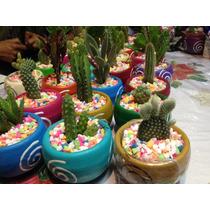 Macetas Decoradas Con Cactus Y Suculentas Para Recuerdos