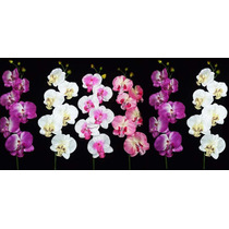 Kit 6 Orquideas Artificiais - Flores Atacado Artificial Flor