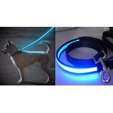 12 Correas Para Collar Perro Mascota Con Luz Led Mck7020 Ne