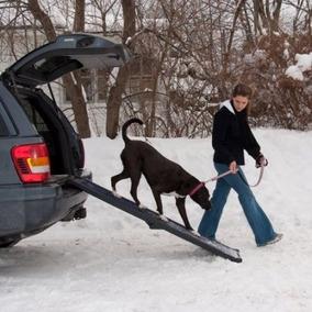 Pet Travel Gear Lite Bi-fold Rampa Completa