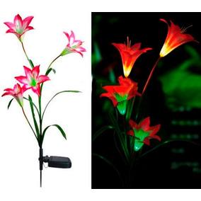 Flor Luz Mudando A Cor De Led