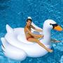 Cisne Gigante Piscina Inflable Juguete