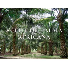Aceite De Palma Africana Cubeta 19 Litros Envio Gratis