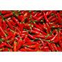 Semente Pimenta Malagueta Feltrin Pct 2,5g