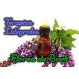 Terapias Flores De Bach