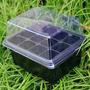 Semillas 12 Agujeros Mini Invernadero!