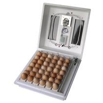 Incubadora Automática Para Pollo Codorniz Y Mas