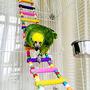 Oneplus Juguete Colorido Del Pájaro De Escalera, Escaleras