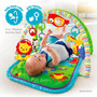 Gimnasio Bebe Fisher Price 3 En 1 Musical Manta Didactica