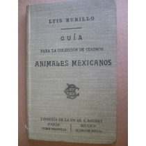 Luis Murillo Guia De Animales Mexicanos Bouret 1906 Raro