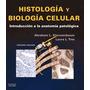 Histología Y Biología Celular Kierszenbaum 3a Ed Libro Pdf
