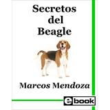 Beagle Libro Adiestramiento Canino Cachorro Adulto Crianza