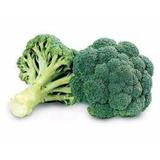 250 Sementes De Brócolis De Cabeça # Melhor Custo Beneficio!