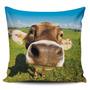 Cojin Decorativo Tayrona Store Vaca 03