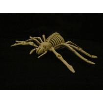 Halloween Decoracion Araña Esqueleto