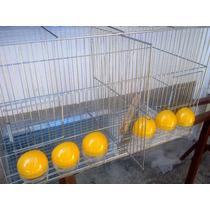 Gaiola 6 Comedouros Malha Fina Canários E Aves Porte Pequeno