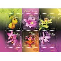 2010 Orquídeas Flora De México Hoja Souvenir 6/sellos Mnh