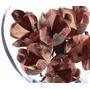 Rosa Tefe 1 Pacote Com 12 Und. Arranjos Flores Desidratada