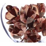 Rosa Tefe 7 Pacotes Com 12 Und. Arranjos Flores Desidratada