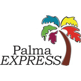 Palma Cola De Zorro (wodyetia Bifurcata) Palmera 1.80 Mts