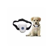 Coleira Colar Anti Latido Ultrassônico P/ Cães + 6 Baterias