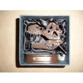 Craneo De T-rex