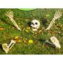 Esqueleto Calaca Calavera Decora En Halloween Día De Muertos